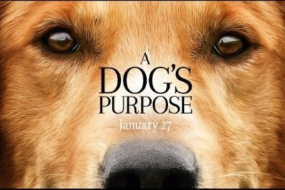 A Dog's Purpose (2017) Official Trailer Dennis Quaid